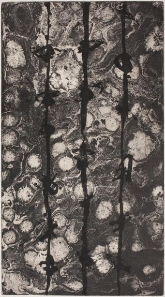 Mark Graver Umbra Sumus, Acrylic Resit  Etching, 900 x 500mm, Kerikeri, New Zealand