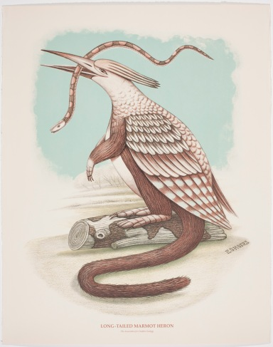 Beauvais Lyons Ornithological Quadruped Long-Tailed Marmot Heron, Lithograpgy, 710 x 710mm. Tennessee, USA