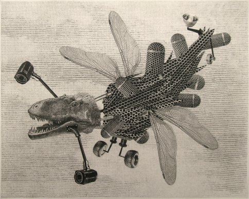 Justin Diggle, Paparazzi Drone, photo polymer intaglio AP, U.S.A $POA