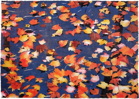 Louisa Rorschach, Leaves on water, reduction woodcut with pochoir on Japanese paper 2/25, U.S.A $POA